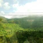 Driving through hills of Sri Lanka
